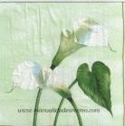 Paquete de servilletas Calas - Paquete de servilletas decorativas, Calas