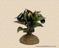 Arbusto de berenjena - Arbusto de berenjenas