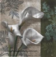 Paquete servilletas Calas blancas - Paquete servilletas Calas Blancas