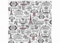 Papel arroz Dft206 Paris -