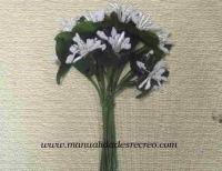 Z001 Florecillas blancas  -