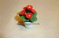 Maceta en miniatura geranio