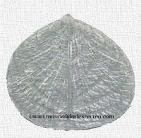 Marcado de goma para flores - Marcador de silicona de flores y hojas