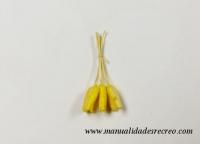 Mazorcas - Mazorcas en miniatura