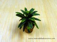 Planta de palma - Maceta de madera de hojas verdes