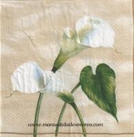 Paquete de servilletas, Calas - Paquete de servilletas decorativas, Flor blanca