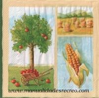 Paquete servilletas, Frutal - Paquete de servilletas decorativas