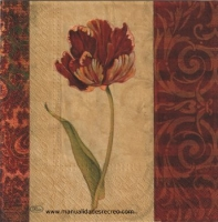 Paquete servilleta Flor granate - Paquete de servilleta decorada con tulipanes rojos