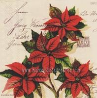Servilleta navidad flor de pascua - Servilleta con motivo navidaño