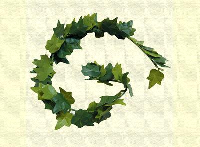 Hiedra en miniatura - hojas de enredadera de fachadas en miniatura