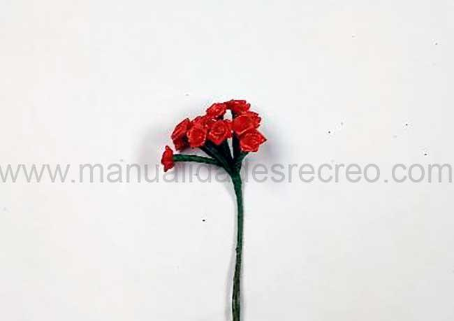 Rosas rojas - Ramo de rosas rojas