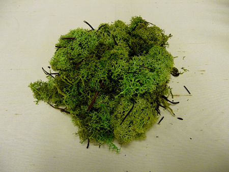 Musgo Verde -